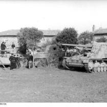 Italien, Panzer VI (Tiger I), Panzerjäger Nashorn/Hornisse