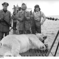 Eismeer, Eisbärfang