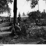 Arnheim, Polizei und SS-Männer in Stellung