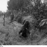 Arnheim, Grenadiere arbeiten sich vor