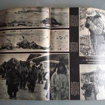 documento militar-signal-aleman-WWII-113