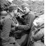 divisiongrossdeutschland alemania