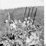 fotos militares WWII Alemania la batalla de Kursk