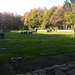 cementerio militar alemán Vossenack (2)